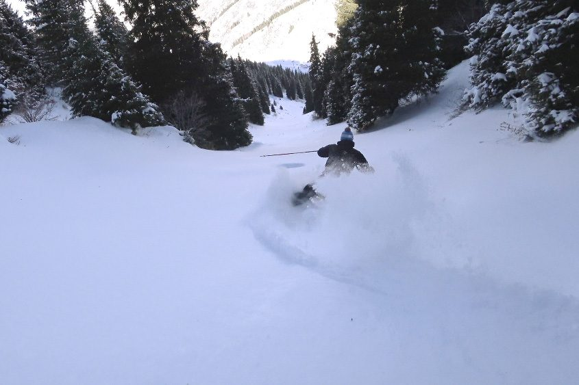 1-day-backcountry